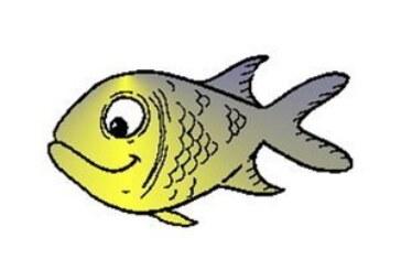 تمرین شماره 16- اندازه طول ماهی چقدر است؟